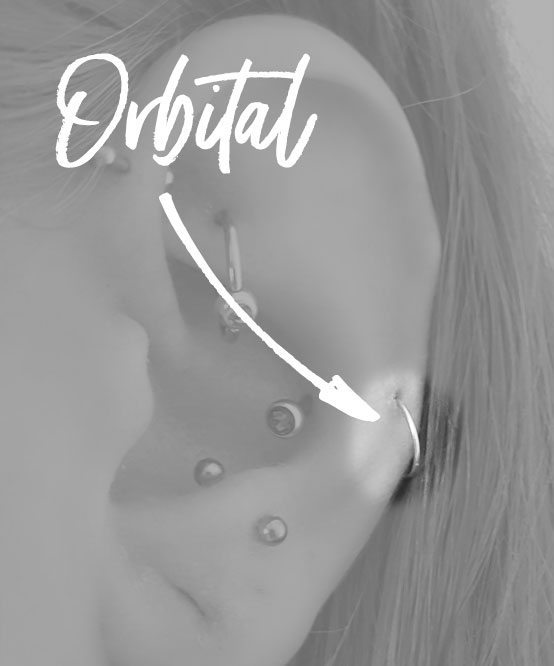 orbital ear piercing