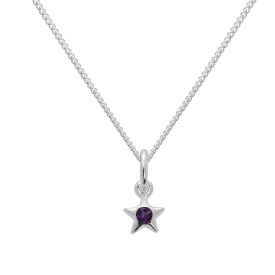 Sterling Silver & Amethyst CZ Crystal February Birthstone Star Pendant Necklace 14 - 32 Inches