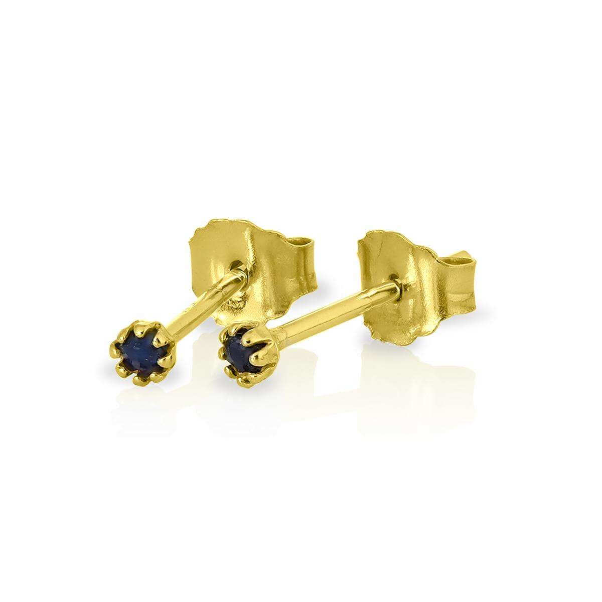 9ct Gold & Sapphire Gemstone 2mm Round Stud Earrings
